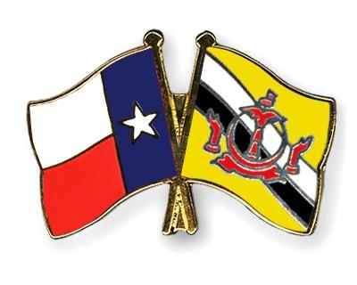 Crossed Flag Pins Texas-Brunei-Darussalam