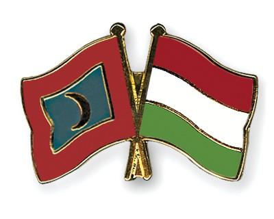 Crossed Flag Pins Maldives-Hungary