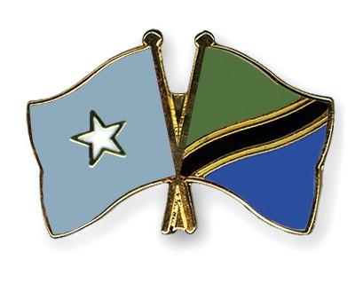 Crossed Flag Pins Somalia-Tanzania