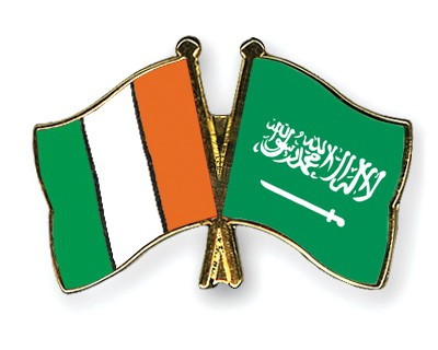 Special Offer Crossed Flag Pins Cote-d-Ivoire-Saudi-Arabia