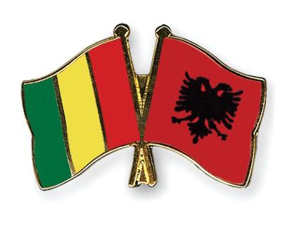 Crossed Flag Pins Guinea-Albania
