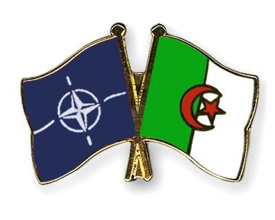 Crossed Flag Pins NATO-Algeria