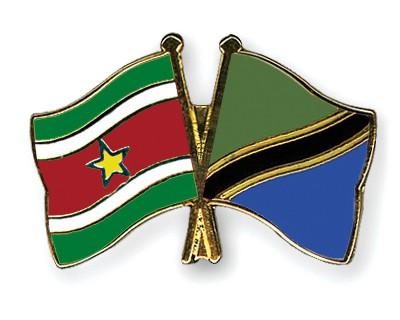 Crossed Flag Pins Suriname-Tanzania