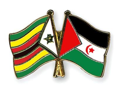 Crossed Flag Pins Zimbabwe-Western-Sahara