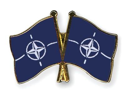 Crossed Flag Pins NATO-NATO