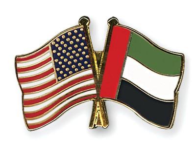 Crossed Flag Pins USA-United-Arab-Emirates