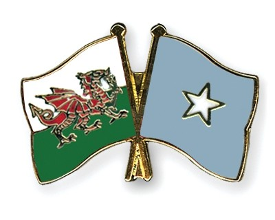 Special Offer Crossed Flag Pins Wales-Somalia