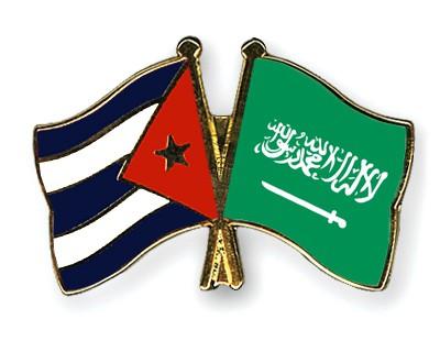 Special Offer Crossed Flag Pins Cuba-Saudi-Arabia