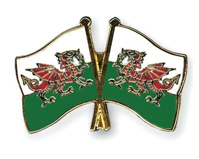 Crossed Flag Pins Wales-Wales